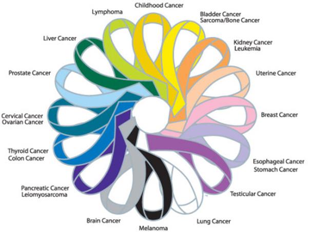 Les différents types de cancers de la vessie
