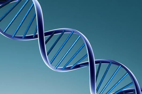 De nouvelles variations génétiques pour un meilleur diagnostique du Cancer de Prostate  Exemplaire