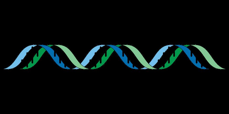 Des scientifiques chinois découvrent un gène lié au cancer de la prostate