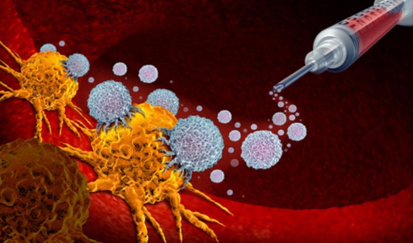 Nouvelle combinaison d'immunothérapie pour traiter le cancer du rein
